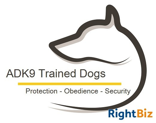 Successful Dog Training Business in Prime Location for Sale - Image 1