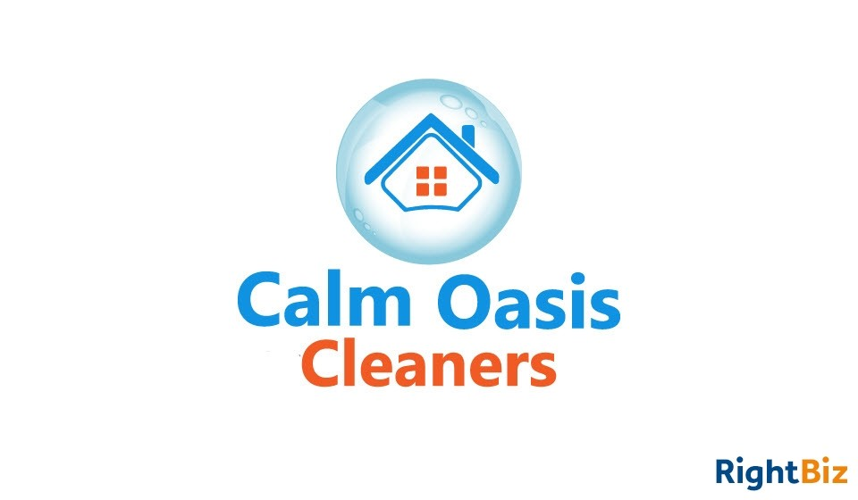 Domestic Cleaning Business Crystal Palace, Streatham. Opportunity to grow an established business. - Image 1