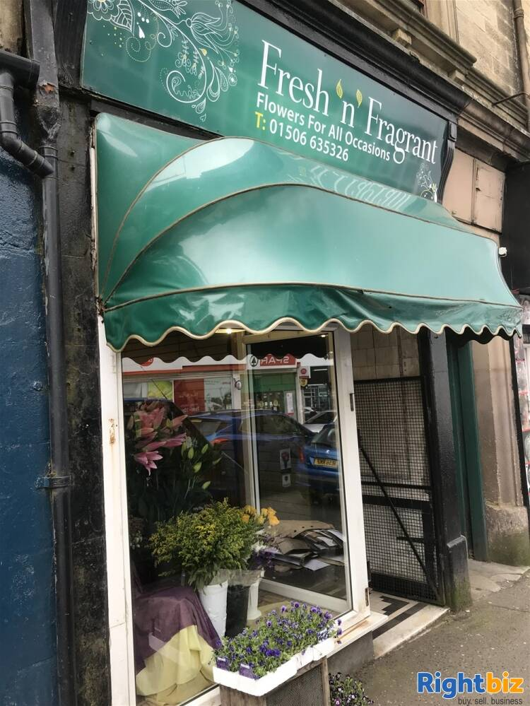 FREEHOLD FLOWERGRAM FLORIST & GIFTS IN BATHGATE TOWN CENTRE - Image 1