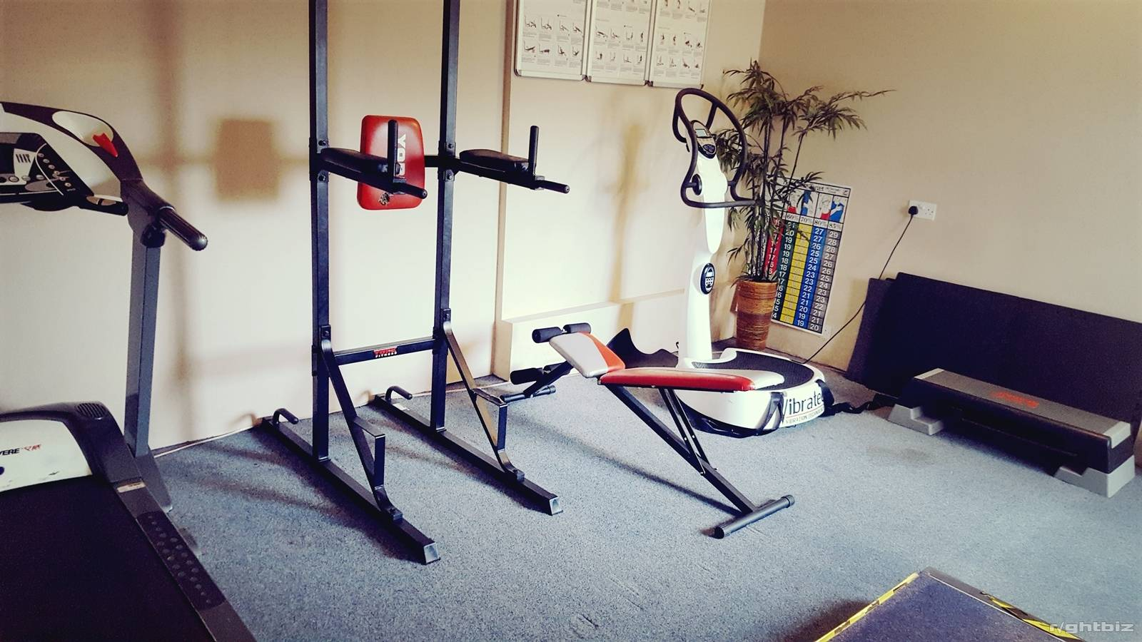 Gym with sunbed studio with low running costs. - Image 12
