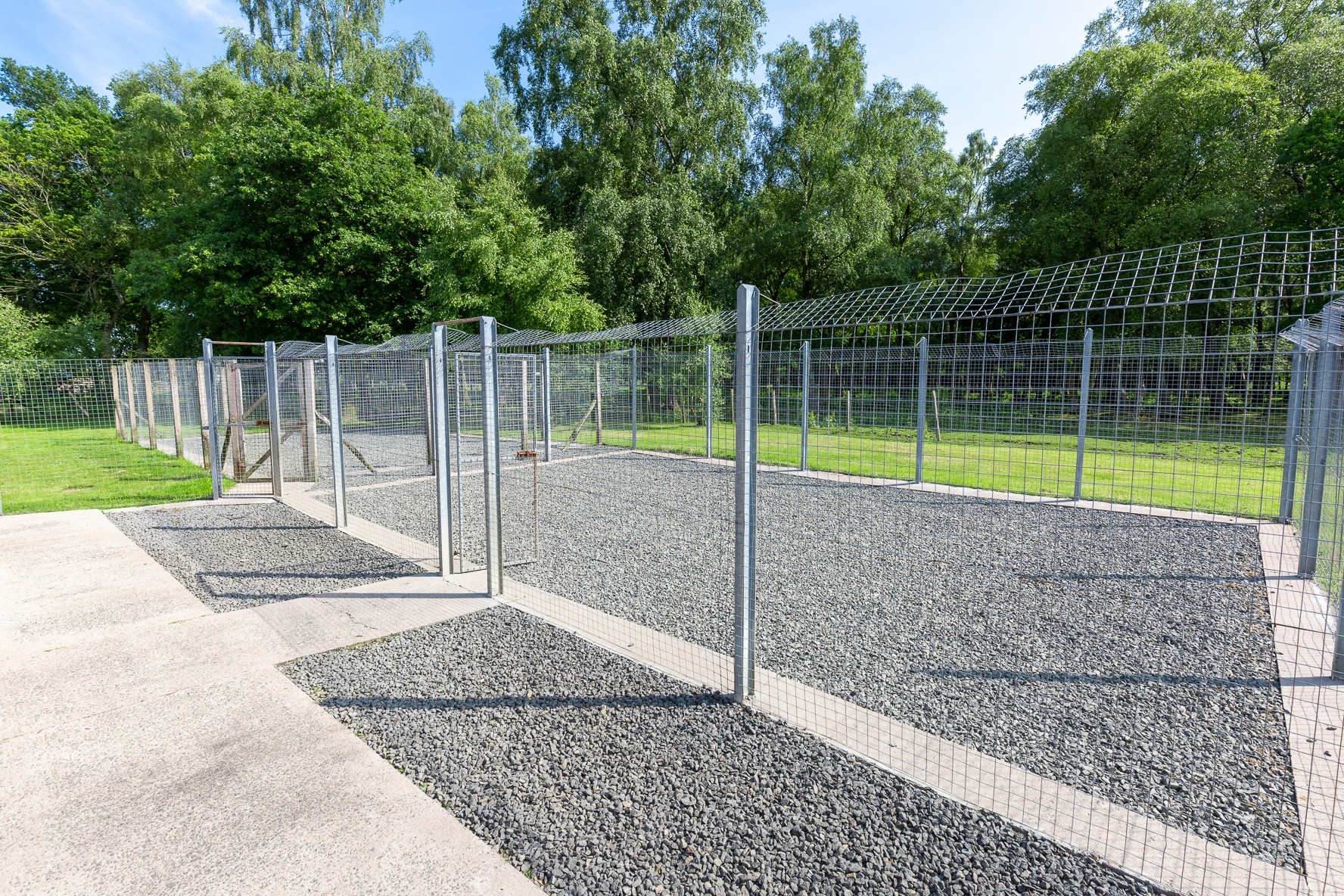 Profitable Boarding Kennels with Superb Family Home in 2.5 acres, Central Scotland - Image 15