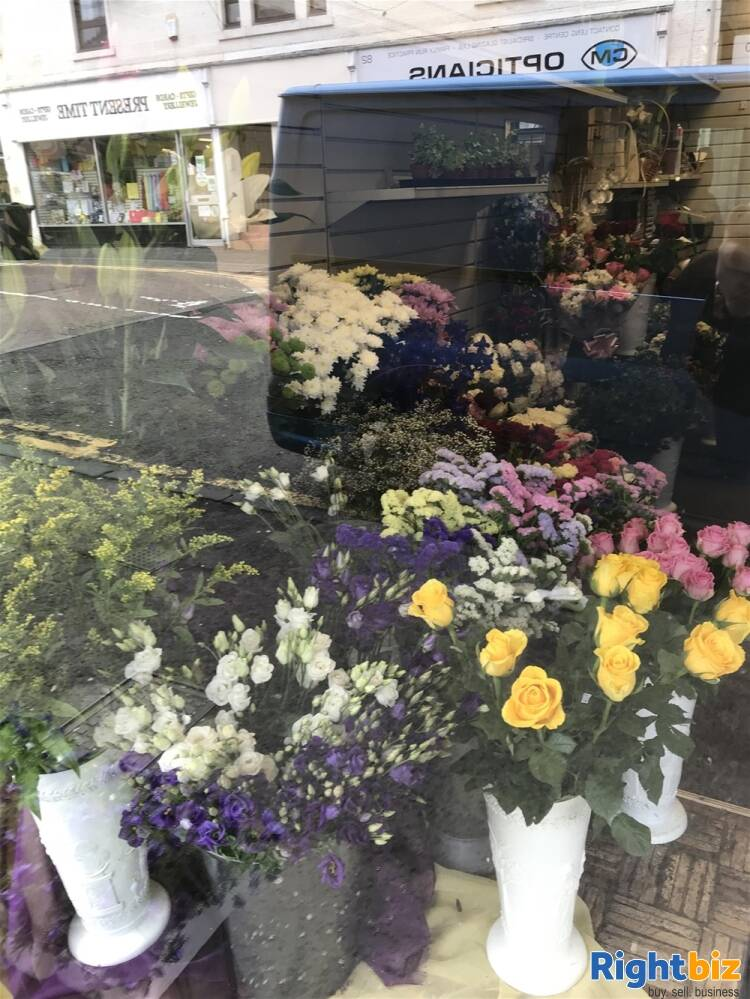 FREEHOLD FLOWERGRAM FLORIST & GIFTS IN BATHGATE TOWN CENTRE - Image 2