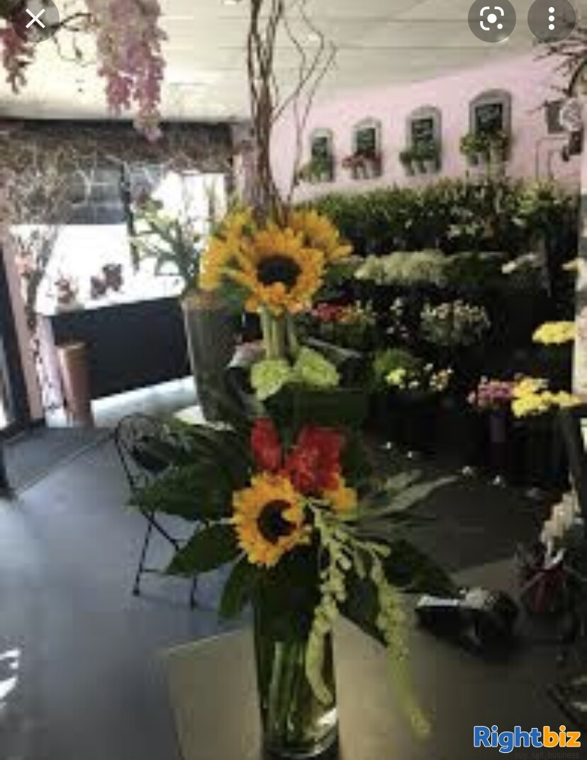 Florist For Sale in Halesowen West Midlands. - Image 2