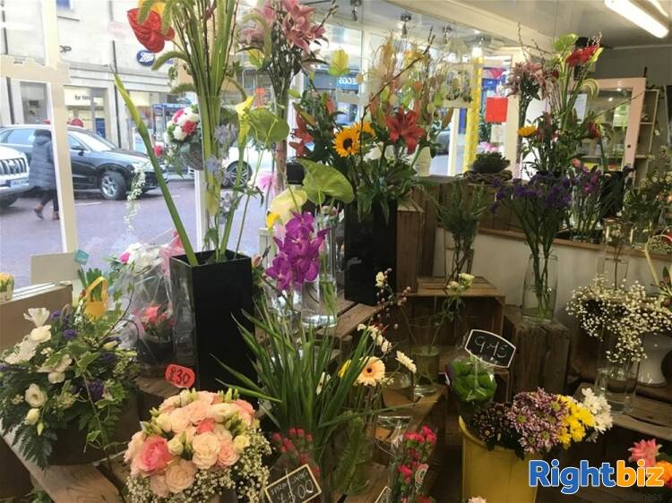 Florist For Sale in Alnwick - Image 2