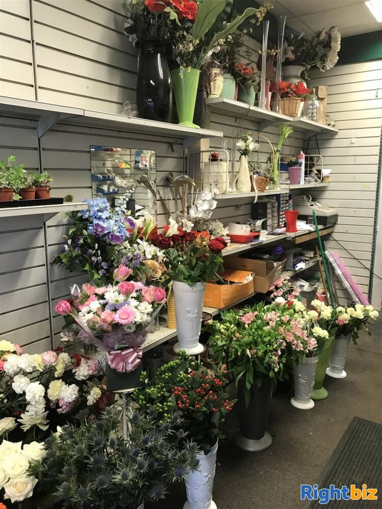 FREEHOLD FLOWERGRAM FLORIST & GIFTS IN BATHGATE TOWN CENTRE - Image 3