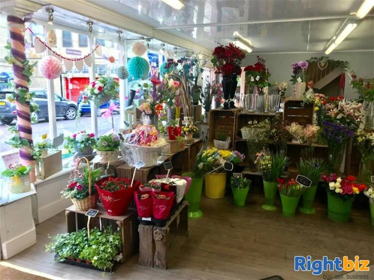 Florist For Sale in Alnwick - Image 3