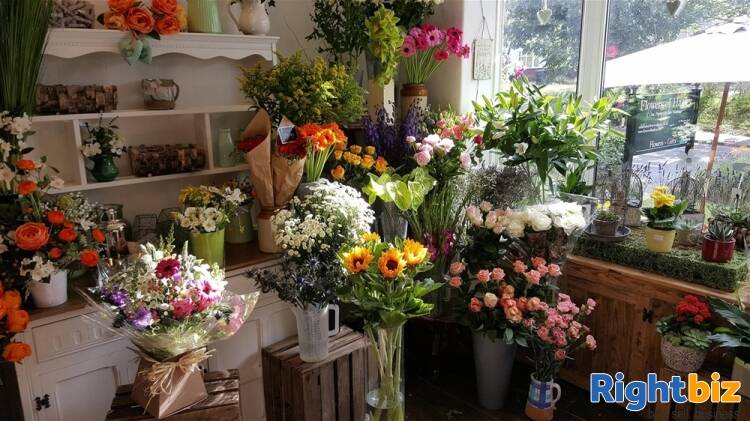 Florist For Sale in Stourbridge - Image 4