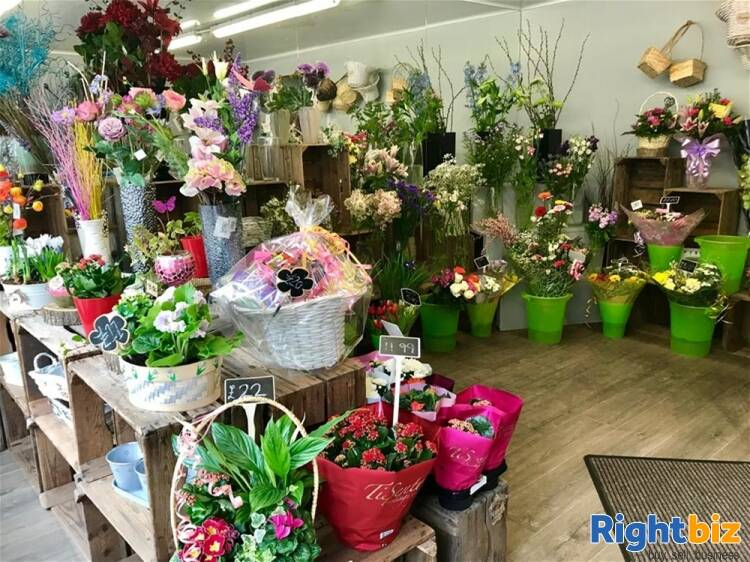 Florist For Sale in Alnwick - Image 4