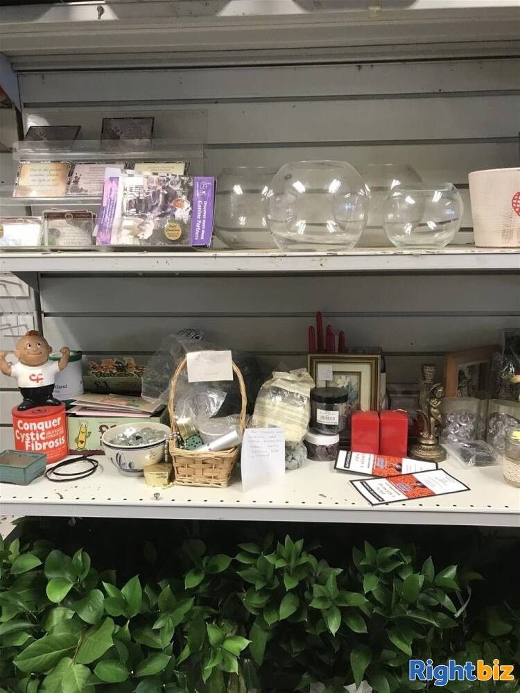 FREEHOLD FLOWERGRAM FLORIST & GIFTS IN BATHGATE TOWN CENTRE - Image 5