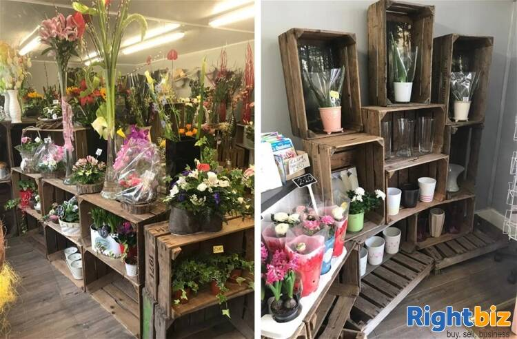 Florist For Sale in Alnwick - Image 5