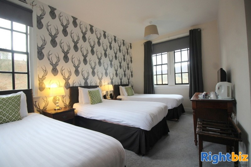 Outstanding 6-Bedroom Guest House near Pitlochry - Image 6