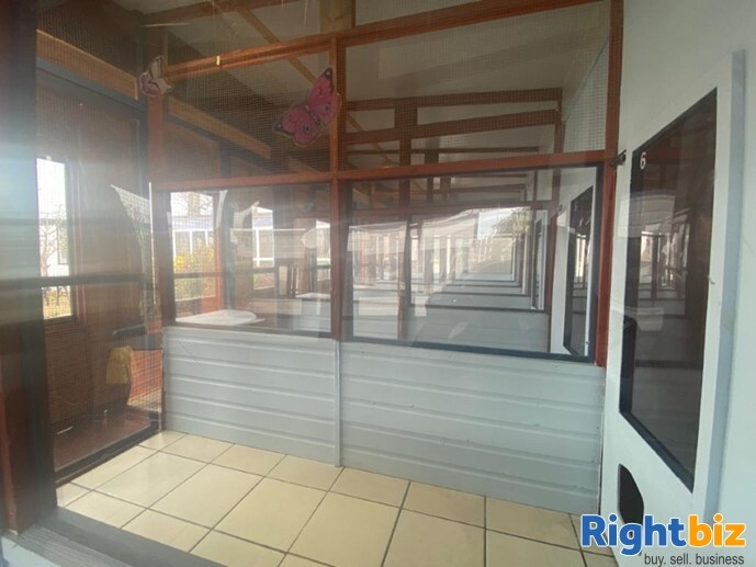 20 Year Established Cattery and Stunning Extensive Family Home - Image 6