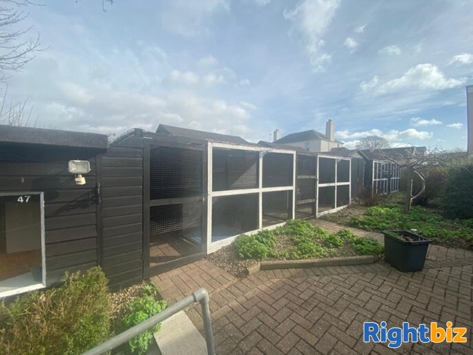 20 Year Established Cattery and Stunning Extensive Family Home - Image 7
