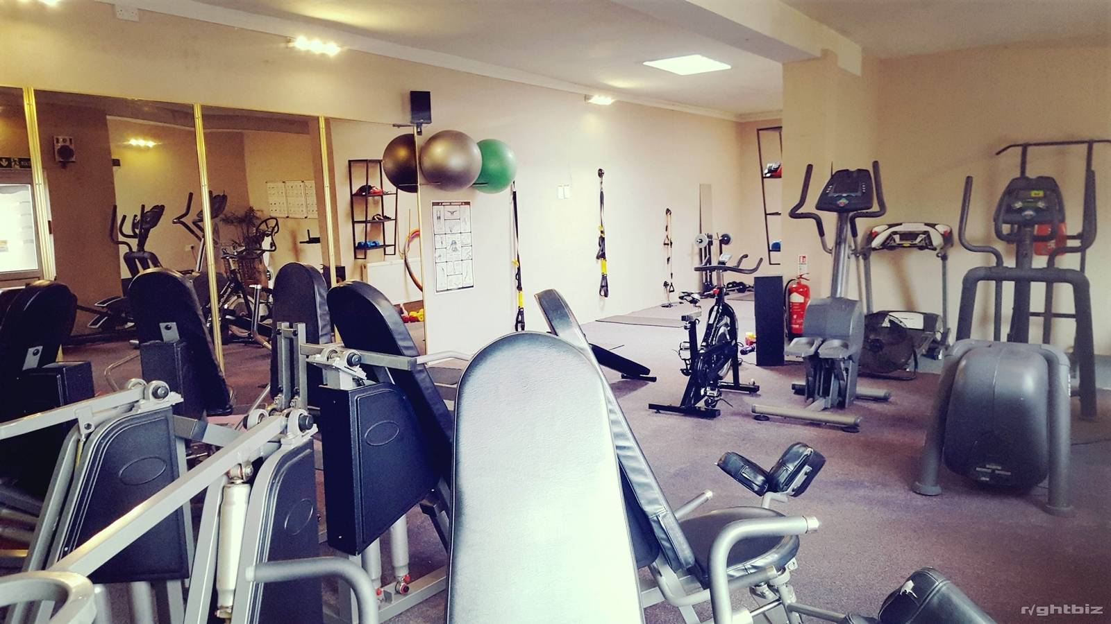 Gym with sunbed studio with low running costs. - Image 9