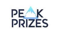 Online Prize Draw Business with Huge Growth Potential